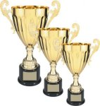 Gold Metal Cup Trophy Gold Cup Trophies