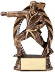 Bronze and Gold Award -Karate Male Karate Trophy Awards