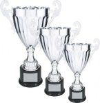 Silver Loving Cup Trophy Silver Cup Trophies