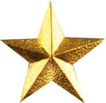 Star Pin Star Awards
